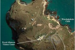 Location-of-Pukekura-Taiaroa-Head-and-Blue-Penguins-ecotourism-business